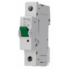 7216.0008.0 Автоматический выключатель MCB B 16A 1P