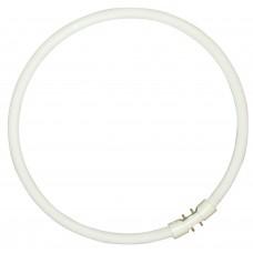 CIRCLINE PLUS 55W/830 T5 SLV
