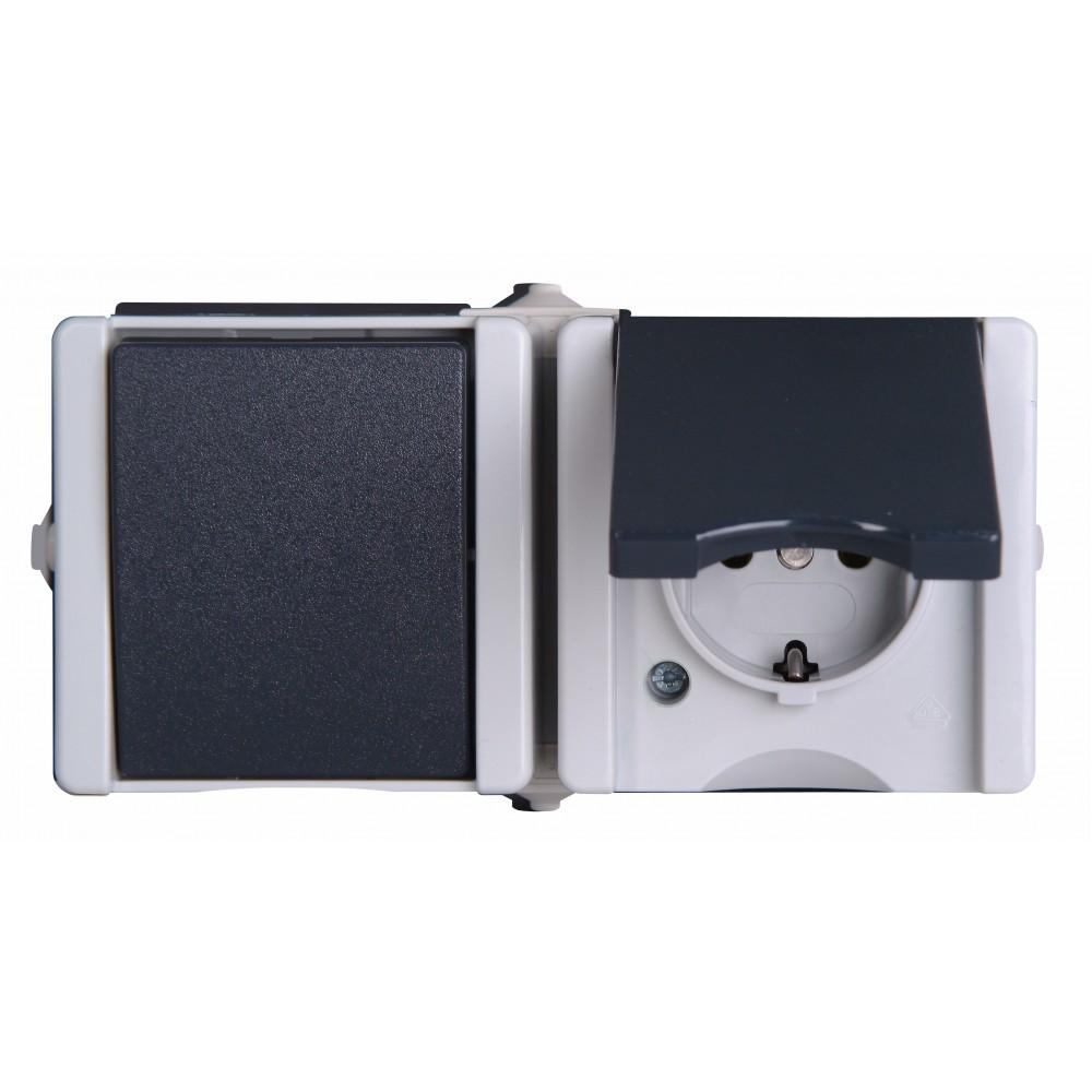 1394.5600.6 PROAQUA  розетка+выключатель горизонтльный